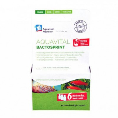 aquavital bactosprint 6-weeks-cure